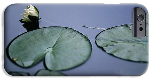 IPhone 6 Case featuring the photograph At Claude Monet's Water Garden 2 by Dubi Roman