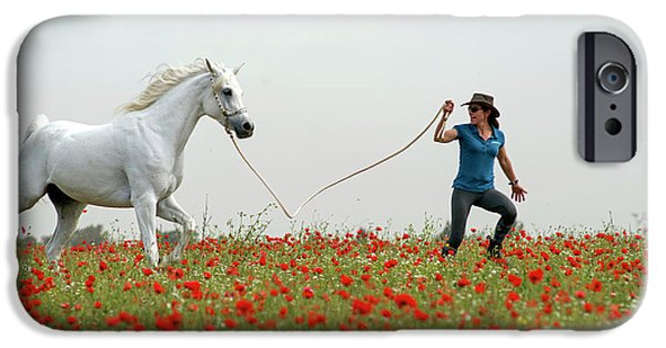 At The Poppies' Field... 2 IPhone 6 Case by Dubi Roman