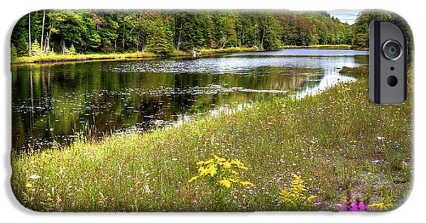 IPhone 6 Case featuring the photograph August Flowers On The Pond by David Patterson