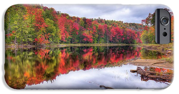 IPhone 6 Case featuring the photograph Autumn Color At The Pond by David Patterson