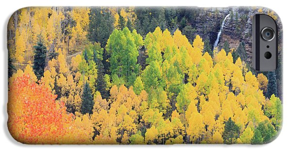 Autumn Glory IPhone 6 Case by David Chandler