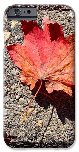 Orange iPhone 6 Case - Autumn Is Here by Blenda Studio
