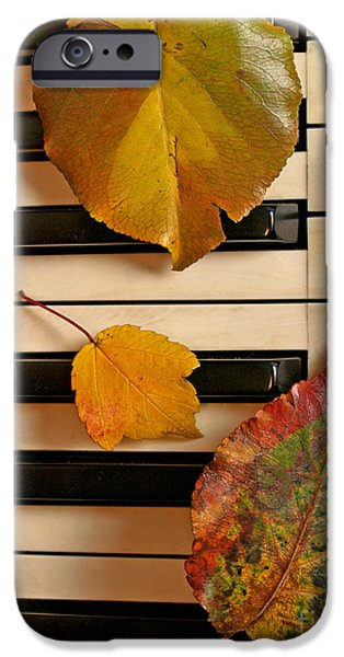 Piano iPhone Cases - Autumn Leaf Trio on Piano iPhone Case by Anna Lisa Yoder