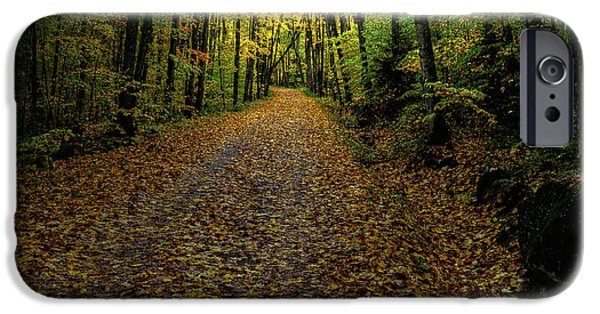 IPhone 6 Case featuring the photograph Autumn Leaves On The Trail by David Patterson