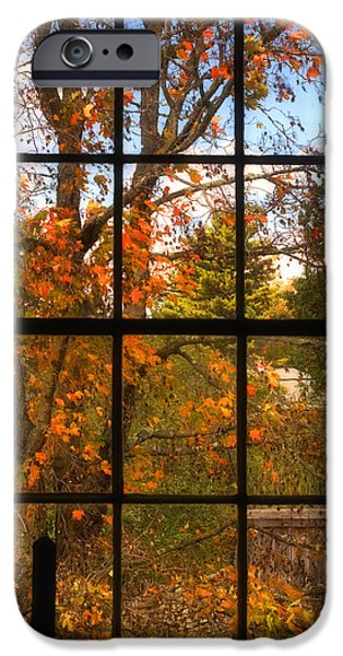 Autumn In New England iPhone Cases - Autumns Palette iPhone Case by Joann Vitali