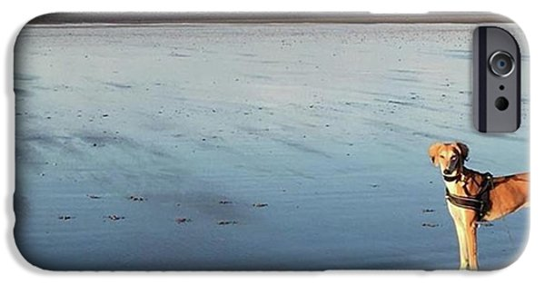 iPhone 6 Case - Ava's Last Walk On Brancaster Beach by John Edwards