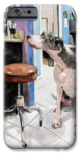 Veterinary iPhone Cases - Back Office iPhone Case by Debra Jones