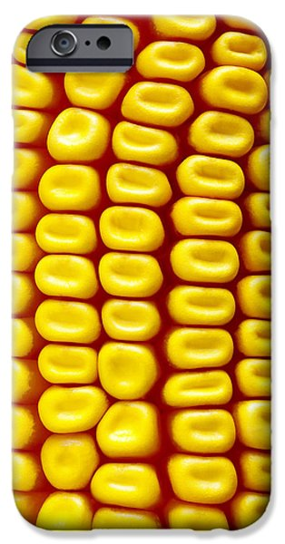 Sweet Corn iPhone Cases - Background Corn iPhone Case by Carlos Caetano