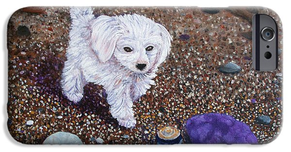 Maltese Puppy iPhone Cases - Beach Discoveries iPhone Case by Laura Iverson