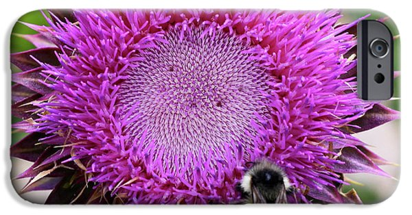 Bee On Thistle IPhone 6 Case