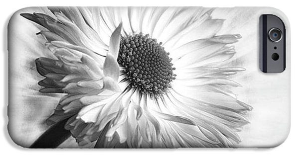 Bellis In Mono  #flower #flowers IPhone 6 Case