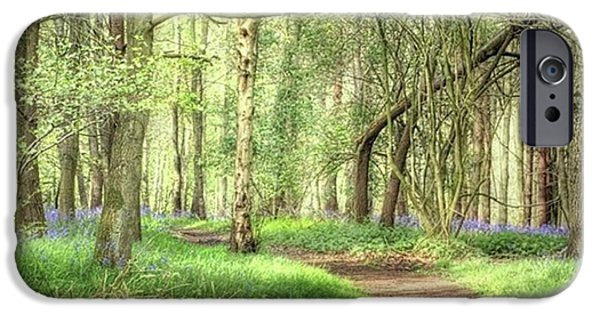 Bentley Woods, Warwickshire #landscape IPhone 6 Case