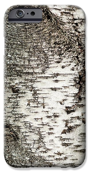 IPhone 6 Case featuring the photograph Birch Tree Bark by Christina Rollo