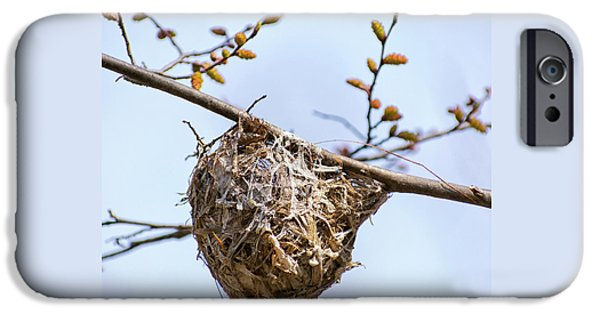 IPhone 6 Case featuring the photograph Birds Nest by Christina Rollo
