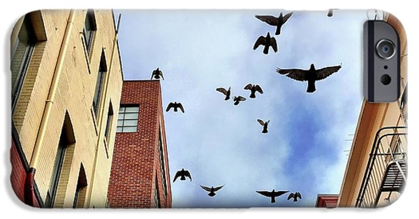 iPhone 6 Case - Birds Overhead by Julie Gebhardt