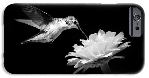 IPhone 6 Case featuring the photograph Black And White Hummingbird And Flower by Christina Rollo