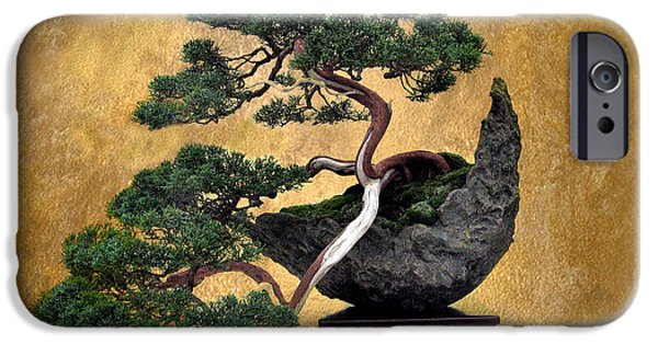 Bonsai 3 IPhone 6 Case by Jessica Jenney