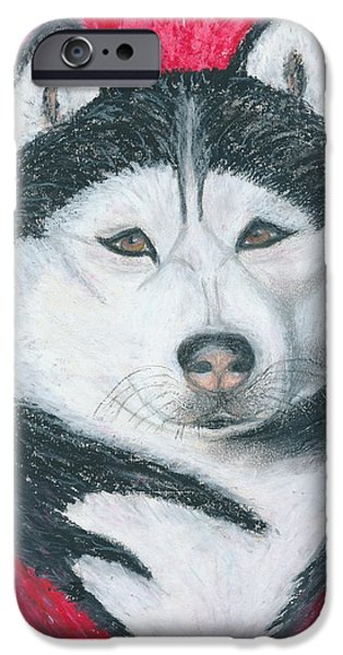 Husky Drawings iPhone Cases - Boris the Siberian Husky iPhone Case by Ania M Milo