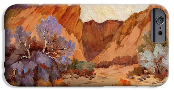 Boxes iPhone Cases - Box Canyon iPhone Case by Diane McClary