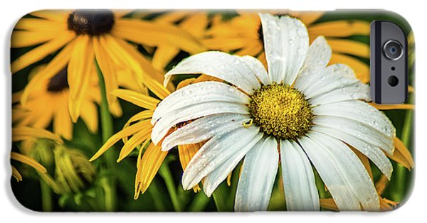 IPhone 6 Case featuring the photograph Bride And Bridesmaids by Bill Pevlor