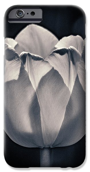 IPhone 6 Case featuring the photograph Brooding Virtue by Bill Pevlor