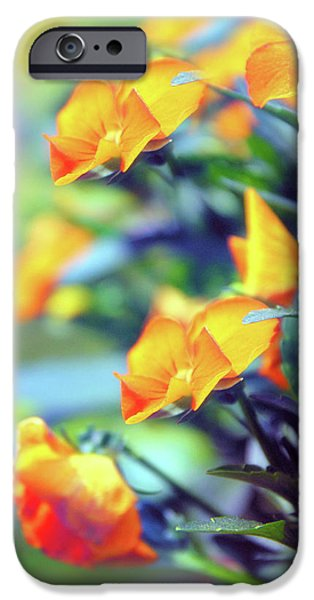 IPhone 6 Case featuring the photograph Buttercups by Jessica Jenney