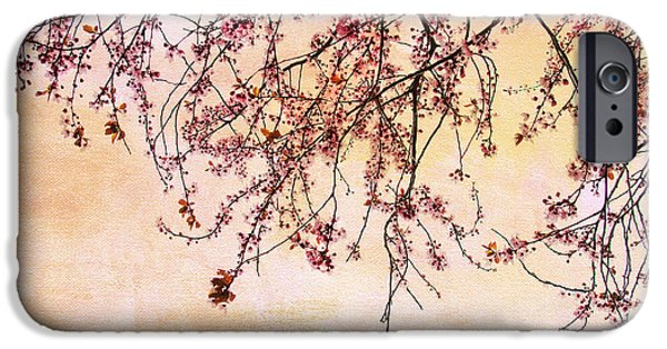 Cherry Blossoms Photographs iPhone Cases - Canopy iPhone Case by Rebecca Cozart