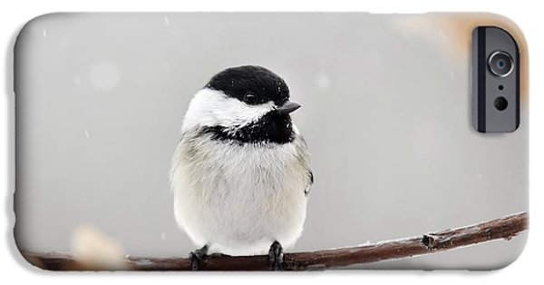 IPhone 6 Case featuring the photograph Chickadee Bird In Snow by Christina Rollo