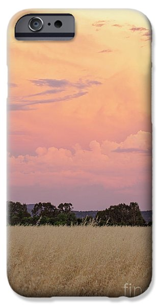 IPhone 6 Case featuring the photograph Christmas Eve In Australia by Linda Lees