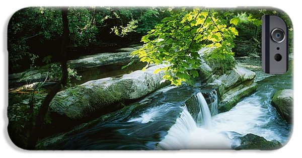 Wood Carving iPhone Cases - Clare Glens, Co Clare, Ireland iPhone Case by The Irish Image Collection