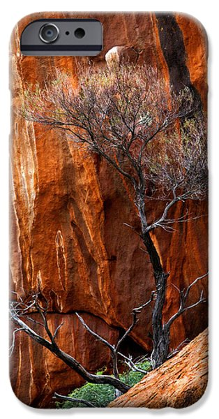 Red Rock iPhone Cases - Clinging to Life iPhone Case by Mike  Dawson
