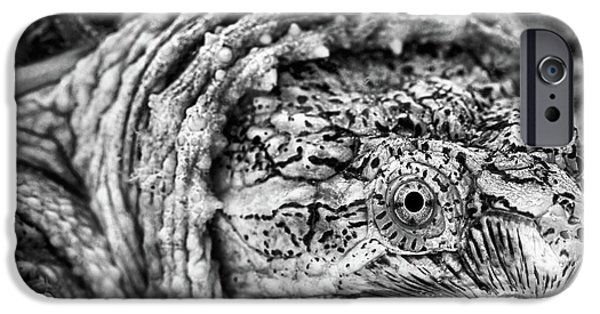 IPhone 6 Case featuring the photograph Closeup Of A Snapping Turtle by JC Findley