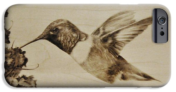 Tropics Pyrography iPhone Cases - Colibri iPhone Case by Ilaria Andreucci