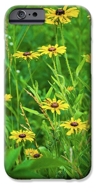 IPhone 6 Case featuring the photograph Collection In The Clearing by Bill Pevlor