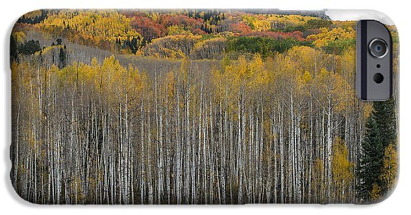 Colorado Splendor IPhone 6 Case