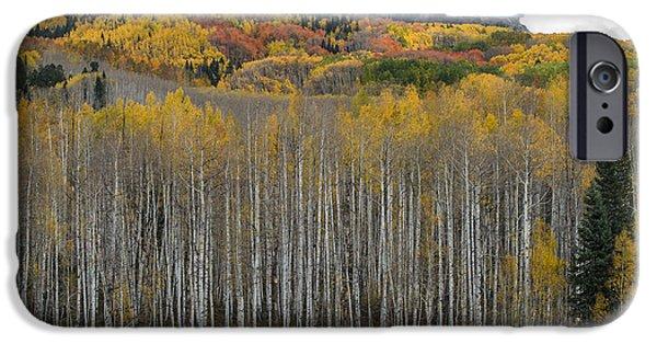 Colorado Splendor IPhone 6 Case by Gary Lengyel