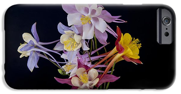 IPhone 6 Case featuring the photograph Columbine Medley by Gary Lengyel