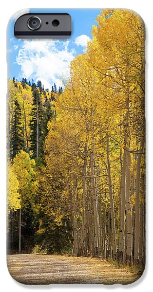 Country Roads IPhone 6 Case by David Chandler