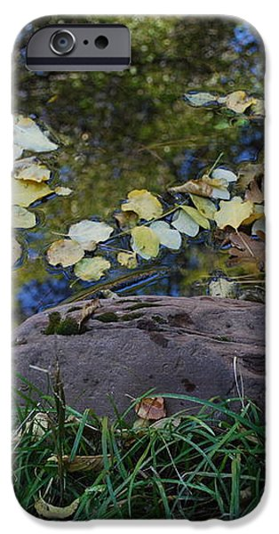 Crab Apple and Leaves iPhone Case by Heather Kirk