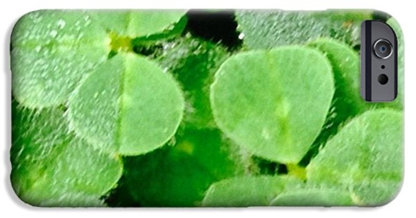 Green iPhone 6 Case - Crazy Thing This Morning I Had A Sudden by Blenda Studio