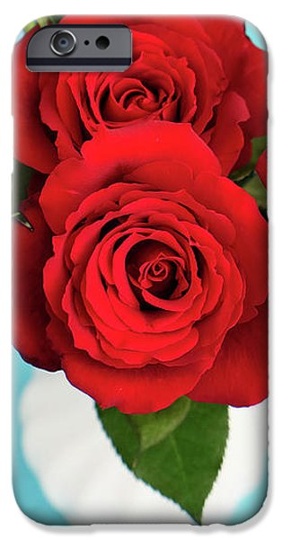 Red Rose iPhone 6 Case - Crimson Roses by Happy Home Artistry