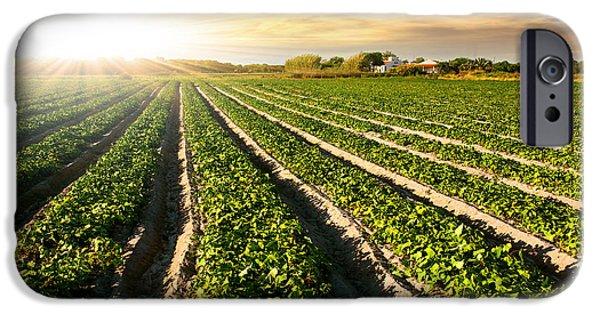 Intensive Farming iPhone 6 Cases | Fine Art America