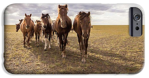 IPhone 6 Case featuring the photograph Curious Horses by Hitendra SINKAR