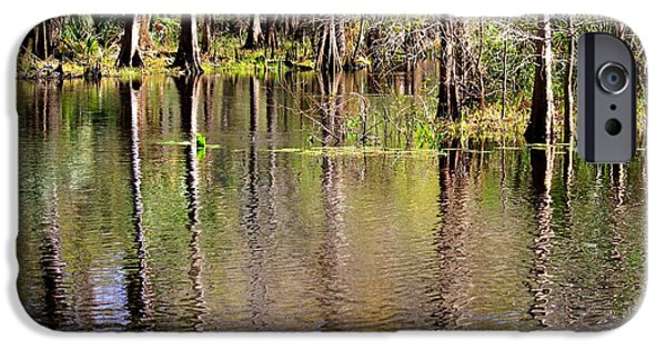 Reflections Of Sky In Water iPhone Cases - Cypress Trees along the Hillsborough River iPhone Case by Carol Groenen