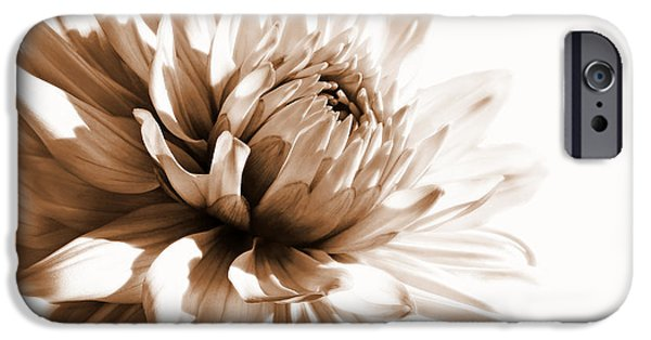 Monotone iPhone Cases - Dahlia Sepial Flower iPhone Case by Jennie Marie Schell