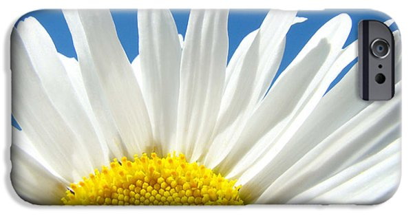 Daisy iPhone Cases - Daisy art prints White Daisies Flowers Blue Sky iPhone Case by Baslee Troutman