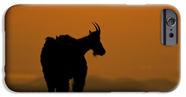 IPhone 6 Case featuring the photograph Day's End by Gary Lengyel