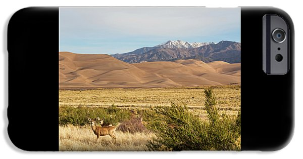 IPhone 6 Case featuring the photograph Deer And The Colorado Sand Dunes by James BO Insogna