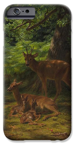 Young iPhone Cases - Deer in Repose iPhone Case by Rosa Bonheur