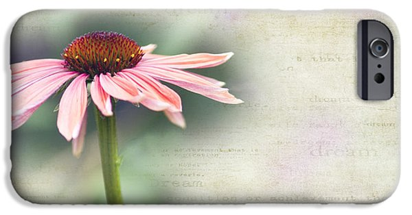 Cone Flower iPhone Cases - Dream iPhone Case by Rebecca Cozart